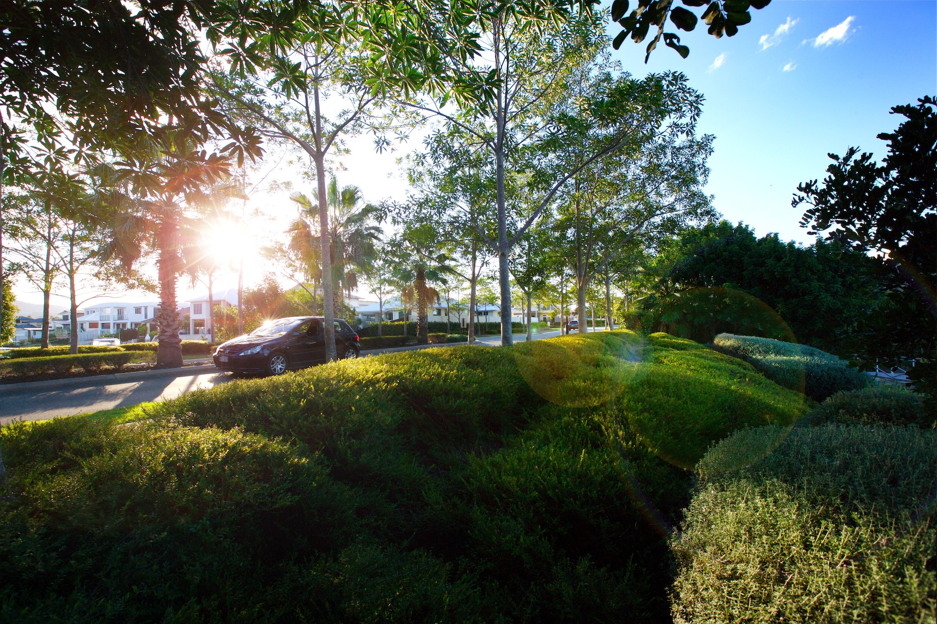 JCD_RIVERLINKS_LANDSCAPING